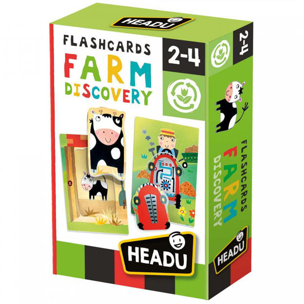 Imagem de Flashcards - Descoberta da Quinta